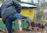 Коряжемцы продолжают обворовывать дачи и частные дома: Украл, выпил, в тюрьму...Романтика