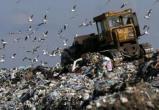Раздельный сбор мусора и протесты в Шиесе. О чем говорили на круглом столе по экологии?